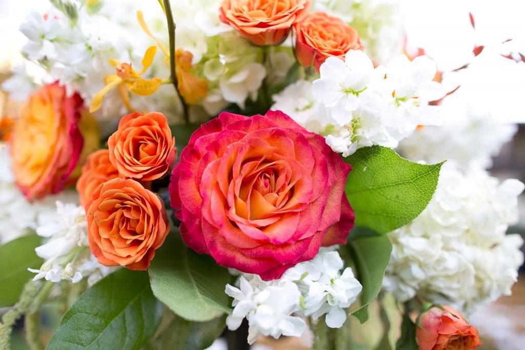 Scott & Lauren: Estacia Hotel La Jolla Wedding Photography